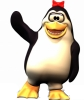 pinguin01.png