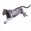 tiger_white.png